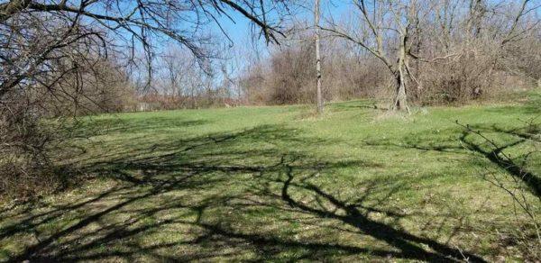 oak ridge neighborhood elkhart